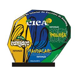 CICA 2013 - 3ª etapa - Peleja