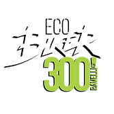 Eco Biker 300 by Ravelli 2019