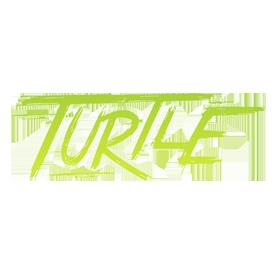Turtle Run 2017