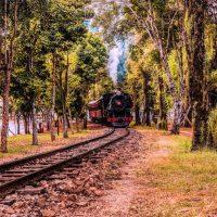 lamision_brasil_trem