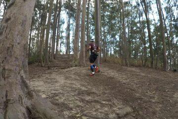 Desafio Tupinambá
