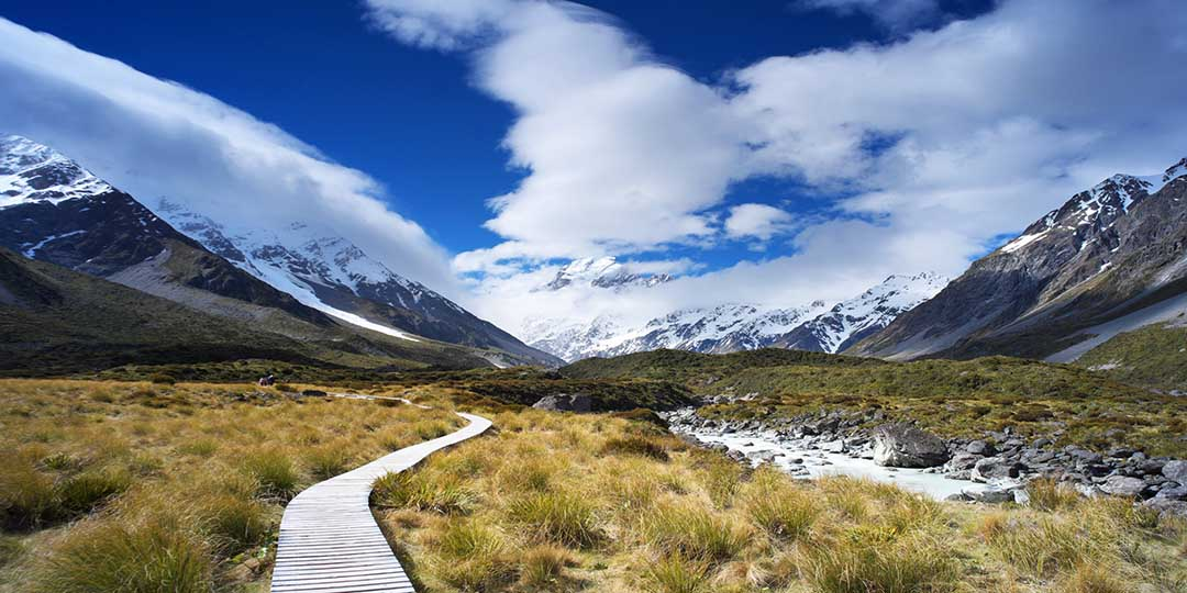 Track To Mt Cook